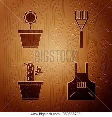 Set Kitchen Apron, Flower In Pot, Cactus And Succulent In Pot And Garden Rake On Wooden Background.