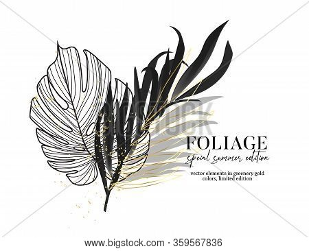 Black Banana Leaf And Golden Palm Line Art, Monstera Leaves In Vector. Paradise Silhouette Botanical