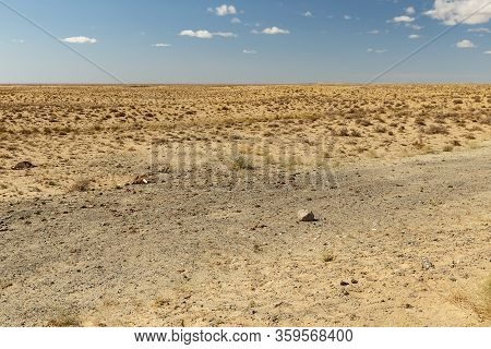 Steppe In Kazakhstan, Deserted Beautiful Landscape, Dry Grass In The Steppe