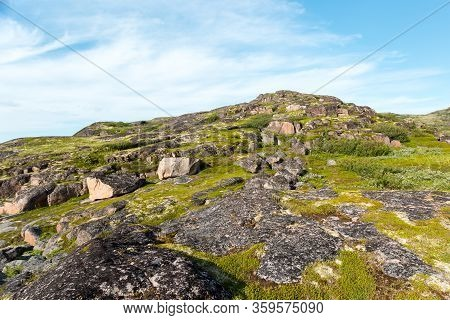 Northern Polar Summer In Tundra. Beautiful Coastline Of Barents Sea, Kola Peninsula, Russia