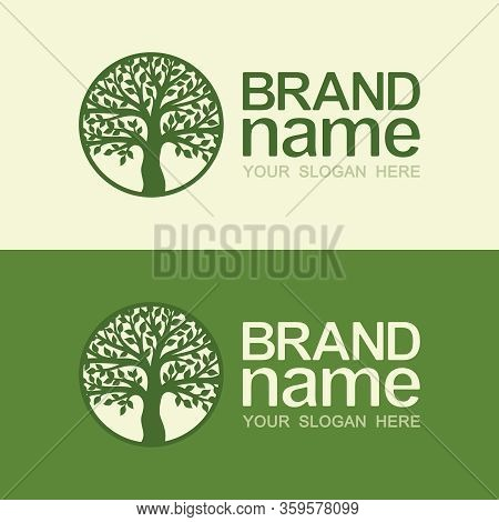 Tree Logo In A Round Frame On Light Beige And Dark Green Background. Silhouette Of Lush Foliage And