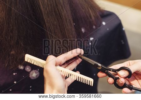 The Master Hairdresser Cuts The Ends Of The Hair Of A Brunette Sitting In A Beauty Salon. Closeup Of