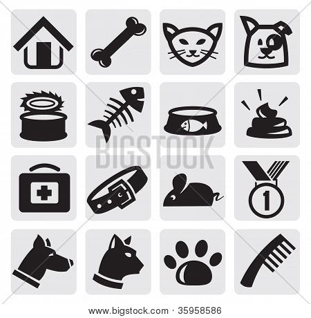 dogs and cats set