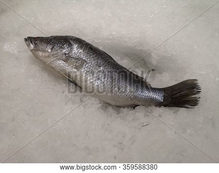 Lates Calcarifer Fresh Fish Placed On Ice Crystals In Supermarket