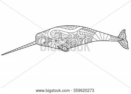 Narwhal - Marine Mammal Coloring Antistress - Vector Linear Picture For Coloring. A Male Unicorn-fis