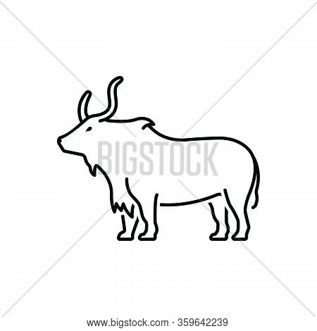 Black Line Icon For Yak Herbivores Aggression Cattle Bull Horn Buffalo Nature Animal Jungle Wildlife