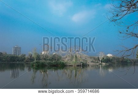 Reflection Lake Landscape Scenery. Standing Water Reflecting Tree Branch Plant. Tranquil Scene. Blue