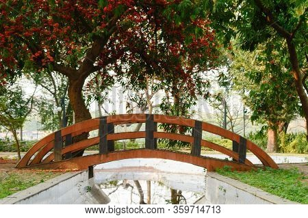 A Small Arch Bridge Over Decorated Canal Pond In Garden Park City Surrounded By Maple Tree Canopy An