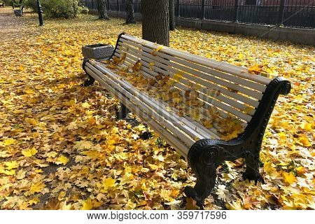 Autumn Landscape. Close-up Of Bench In Park Among Yellow Trees And Carpet Of Maple Leaves On Bright