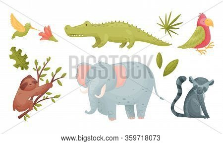 African Animals With Toothy Crocodile And Sloth Sitting On Tree Branch Vector Set