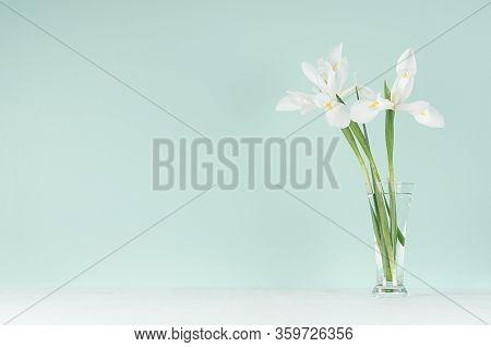 Fresh Spring Home Decor  - Elegant Gentle White Flowers Of Iris In Transparent Glass Vase  On Green