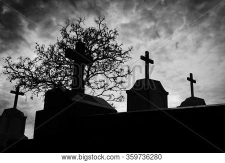 Cemetery Or Graveyard And Dead Tree In The Night With Dark Sky And Clouds. Silhouette Death Tree And