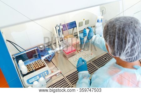 Research In Laboratory. Professional Laboratory Assistant Taking Blood Test For Dna Research. Health