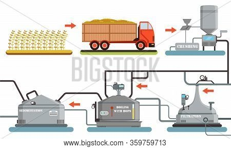 Beer Production Process, Harvesting, Crushing, Sedimentation, Boiling With Hops, Filtration Automate