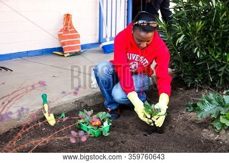 Diverse People Performing Community Service Gardening At Local Township School