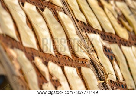 Yellow Tofu Slices Drying In The Sun On Bamboo Pallets Inle Lake Myanmar Burma