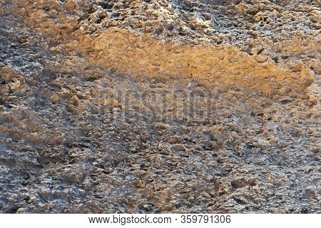 Texture Of Natural Rock Shell Of Rocky Rock, Marine Life Structure With Limestone And Traces Of Eros