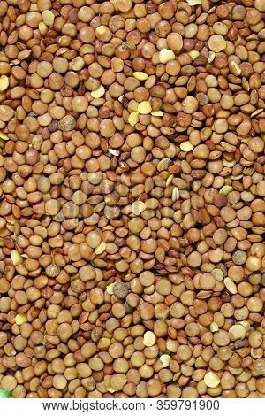 Brown Lentils. Background Texture Of Grains Of Brown Lentils. Top View Of Lentil Grains. Close-up, V