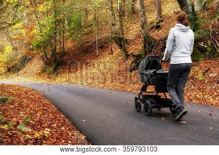 Mother With Pram Walking On The Road In Autumn Nature