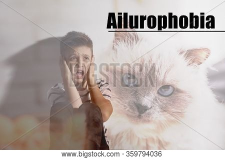 Little Boy Suffering From Ailurophobia. Irrational Fear Of Cats