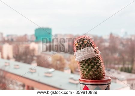 The Concept Of Boredom At Home During Quarantine And Isolation, A Lonely Cactus On The Balcony