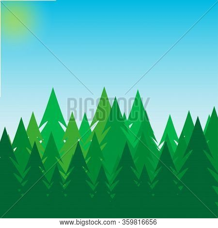 Background Of Pine Forest, Nature, Landscape Blue Sky And Sun. Abstract Silhouettes Of Green Forest