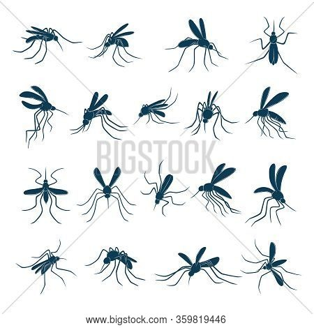 Flying Mosquito. Little Bloodsucker Insects Carriers Of Viruses Silhouettes Vector Drawn Set. Mosqui