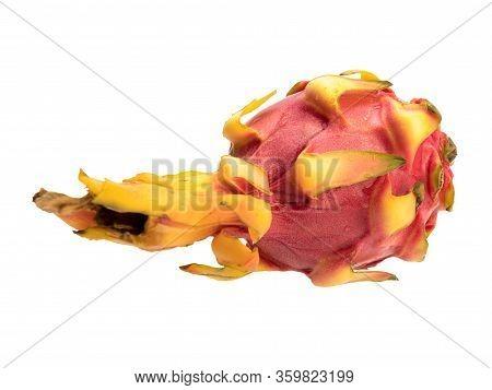 Pitaya Cactus Fruit Isolated Object