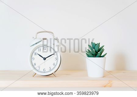 Alarm Clock And Home Plant On The Desk On A White Wall Background. Copy Space
