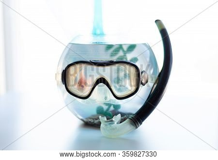 Mask And Snorkel For Snorkeling And Diving On A Round Aquarium
