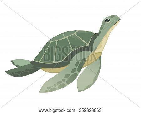 Big Green Sea Turtle Cartoon Cute Animal Design Ocean Tortoise Swimming In Water Flat Vector Illustr