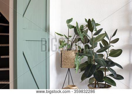 Modern Living Room Interior With Green House Plants And A Green Sliding Barn Door. Retro Modern Desi