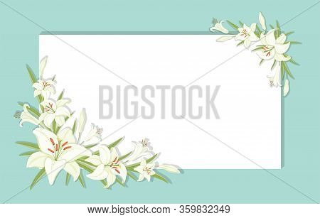 Floral Background. Square Frame Decorated With White Lilies Flowers. White Lilies With Green Foliage