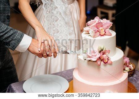 Newlyweds Cutting Wedding Cake Celebration Party Lovers