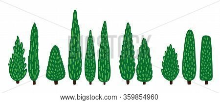 Set Of Decorative Cartoon Cypresses. Tall Trees Collection.