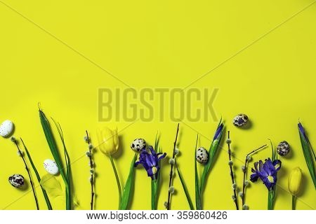 Easter Frame On A Yellow Background Twigs Of Yellow Tulips, Blue Irises, Pussy-willow Twigs, Top Vie