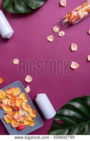 Top view of rose petals are on a plate and in a glass jar with tropical leaves and wax candles on color background.
