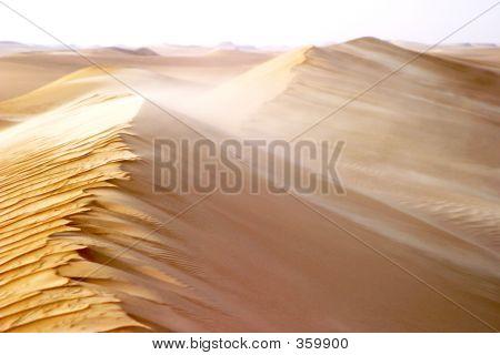 Egypt 1011v4