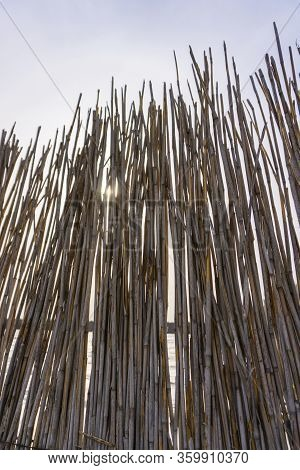 The Texture Of The Dry Reeds. A Fence Made Of Reeds. The Roof Is Covered With Reeds. Dry Grass. Cane