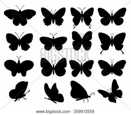 Butterflies Silhouettes. Spring Butterfly Silhouette Collection Isolated On White Background.