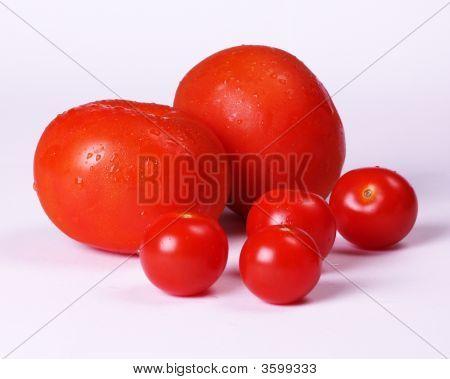 Juicy Red Tomotoes