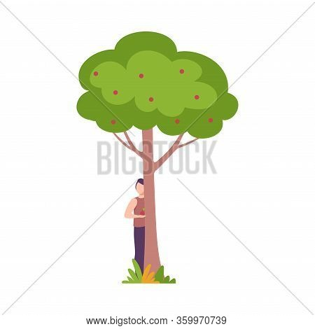Young Man Standing Behind Apple Tree, Guy Peeking Behind Tree Trunk Vector Illustration