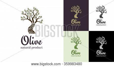 Elegant Olive Tree Isolated Icon. Vector Tree Logo Design Concept. Olive Tree Silhouette Illustratio