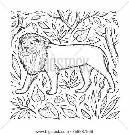 Lion Vector Hand Drawn Sketch. Engraving. Wild Animal, Trees And Leaves Isolated On White Background
