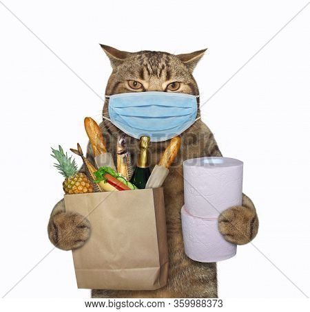 The Beige Cat In A Surgical Protection Face Mask Is Holding A Bag Of Groceries And Toilet Paper Roll