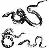 Set of 3 Snakes in the style of traditional Chinese ink painting poster