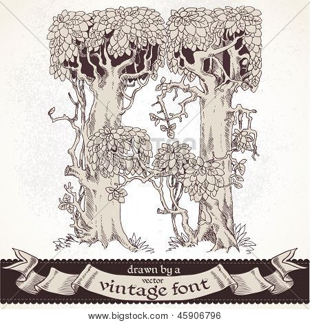 Fable forest hand drawn by a vintage font - H