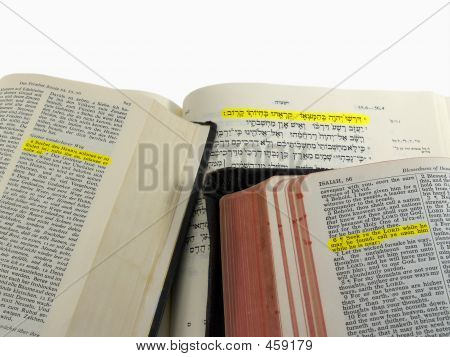 Highlighted Bible Passage
