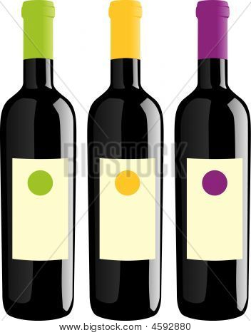 Isolated Wine Bottles Set