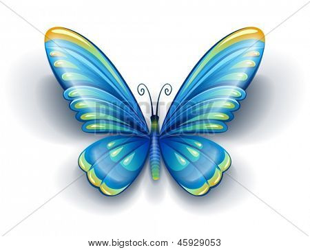 blue butterfly insect with color wings - EPS10 vector illustration isolated on white background